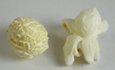 Mushroom_and_butterfly_popcorn