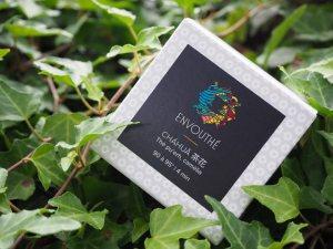 envouthe-casse-tete-chinois-chahua-1